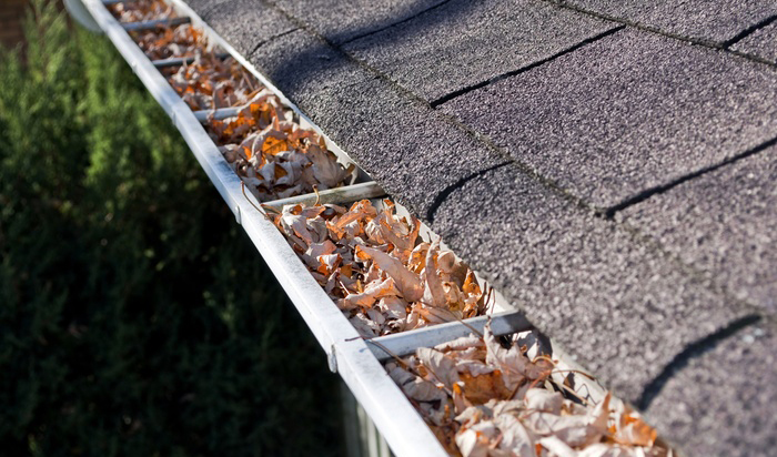 Gutter Cleaning Services In Baltimore Maryland And